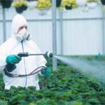 Fungicide on Fruits and Vegetables
