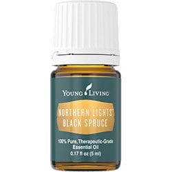 nothern lights black spruce
