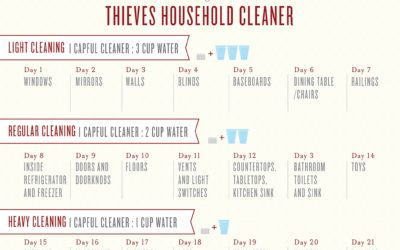 Thieves Household Cleaner – 21 Day Cleaning Calender