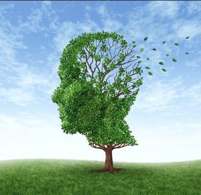 Brain Fog or Memory Loss