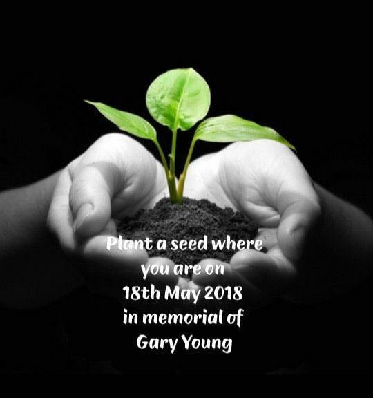 Planting a Seeed