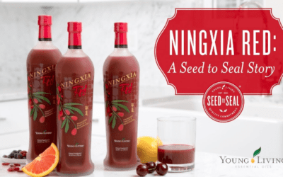 NingXia Red – Is There A Preservative?