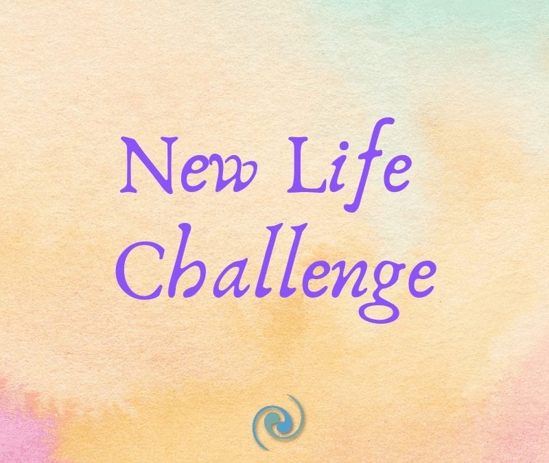 The New Life Challenge